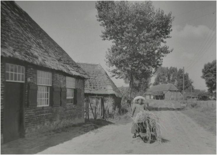 Heeze - Jana Vlemmix-Scheepers overleed in 1960, enkele jaren later werd de boerderij gesloopt. Natuurlijk droeg de boerin geen poffer als ze aan het werk was, zeker niet met de kruiwagen.