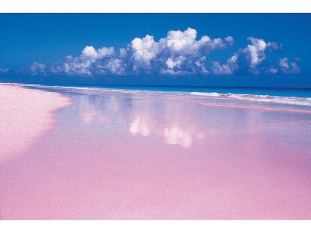 Harbour Island , nas Bahamas. É apenas 3,5 milhas de comprimento e 1,5 milhas de largura , mas é o lar de uma das praias mais bonitas do Caribe. Os testes vermelhas de foraminíferos ; um plâncton marinho unicelular , se mistura com areia branca da ilha , criando o tom rosado rosado suave