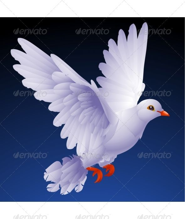 Peace on earth dove images for wedding