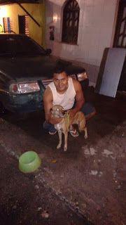 TAXI DOG MONTANHA TRANSPORTE DE ANIMAIS NO RIO DE JANEIRO: MEL (De Salvador-BA para Itaipuaçú-RJ) 23/07/2015 ...
