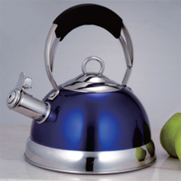 Stainless Steel Tea Kettle With Powder Coating In Blue 2