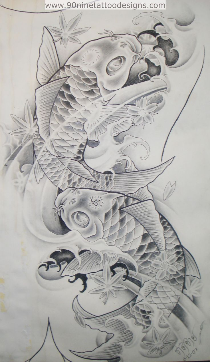 Best 25+ Coy fish ideas on Pinterest | Koi, Koi art and Japanese ...