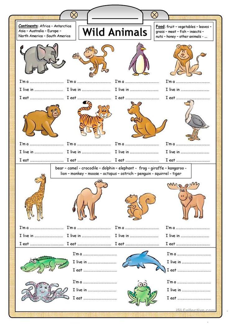80 Free Esl Wild Animals Worksheets For Kindergarten Pdf Reading Writing Worksheet Fun Activitie Writing Worksheets Animal Activities For Kids Animals For Kids Kindergarten worksheets australia pdf