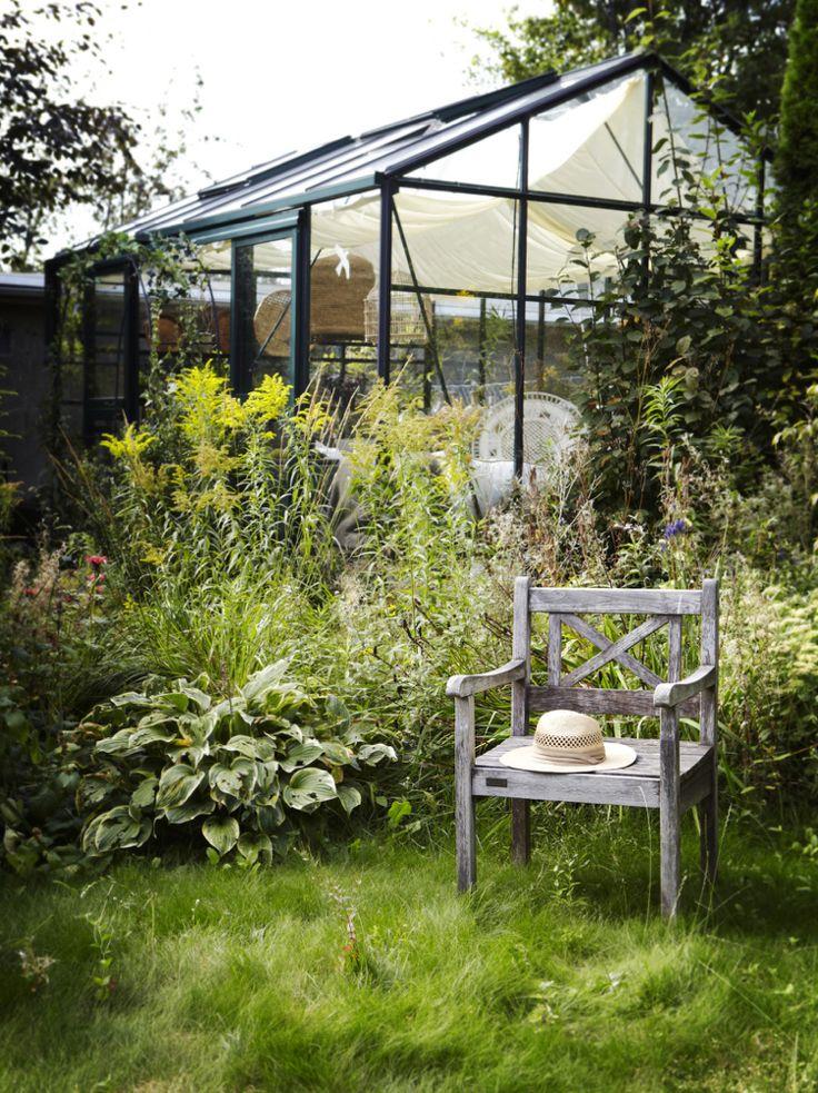 serre de jardinverre-métal-végétation-luxuriante