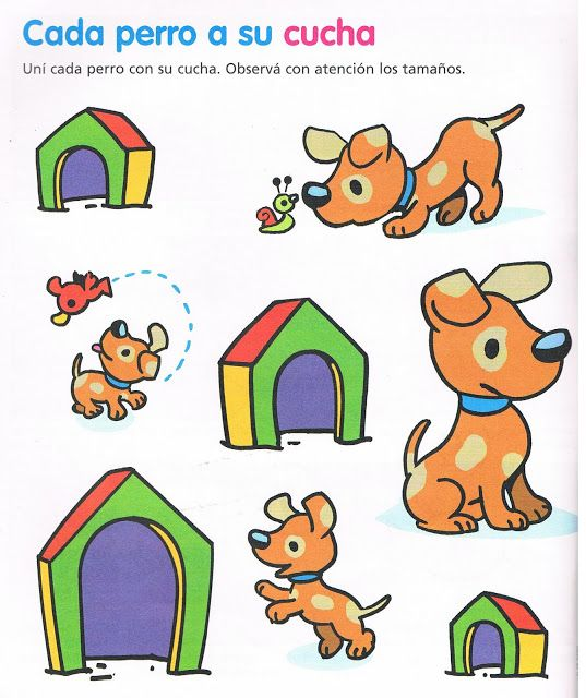Welk hok hoort bij welke hond, free printable