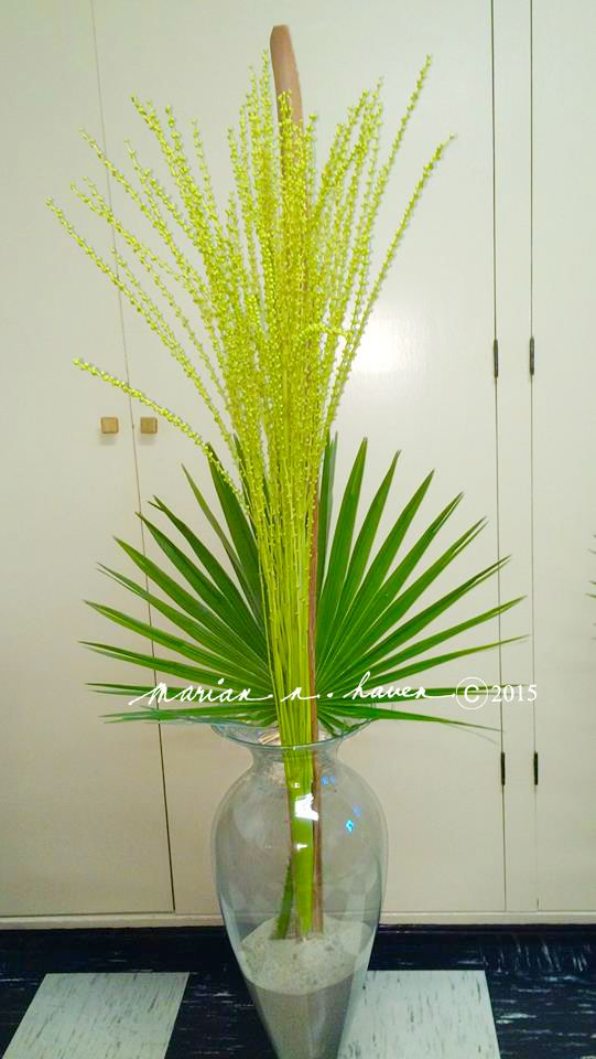 My 5 feet tall palm date arrangement. So simple, yet elegant and low maintenance. Palm Sunday 2015, St. Dunstan, Millbrae, CA.--MARIAN N. HAVEN