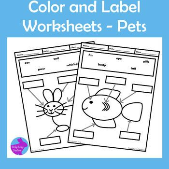 Pets Color and Label Worksheets Motor Skills OT Binky Bunny