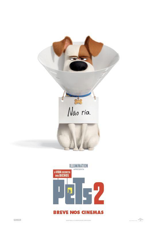 Pets A Vida Secreta Dos Bichos 2 Filmes Completos E Dublados