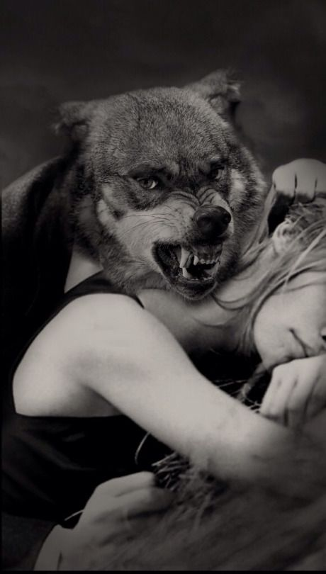 Where are you big bad wolf?