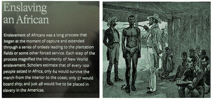 Enslaving an African  Enslavement of Africans was a long process that began at the moment of capture and extended through a series of ordeals leading to the plantation fields or some other forced service. Each step of the process magnified the inhumanity of New World enslavement. Scholars estimate that of every 100 people seized in Africa, only 64 would survive the march from the interior to the coast; only 57 would board ship; and just 48 would live to be placed in slavery in the Americas.