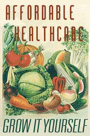 1900 Victorian Vegetables Vintage Seed Amp Organic Food
