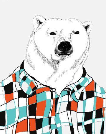 flannel bear
