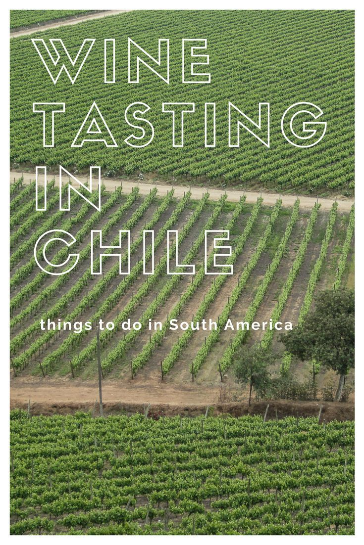 Wine Tasting in Chile: There are plentiful wine regions, Maipo Valley, Casablanca Valley,Colchagua Valley. World famous for Production of Cabernet Sauvignon, Merlot and Carmenère varieties. Read my top 10 things to do in chile. The best places to visit in Chile: Easter Island Rapa Nui, Easter Island Statues, Patagonia Travel, Chile tourism, San Pedro de Atacama, Valle de la Luna, Geyser, Pucon, Temuco, Villarrica Volcano, Valparaiso Chile, Chile Wine Country, Santiago to Mendoza bus