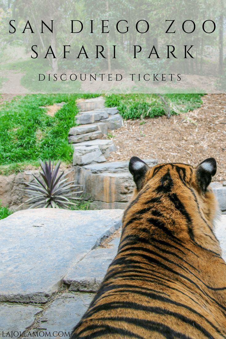 How To Buy Discount San Diego Zoo Safari Park Tickets Top 14