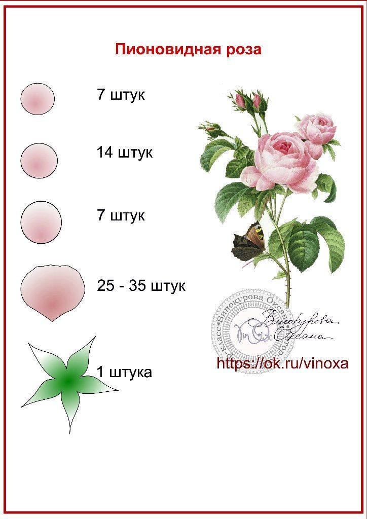 Цветы из фоамирана | ВКонтакте
