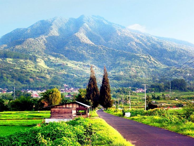 #nature #landscape #mountain #mount #singgalang #bukittinggi #westsumatera #procamapp #maxcurve #iphoneography