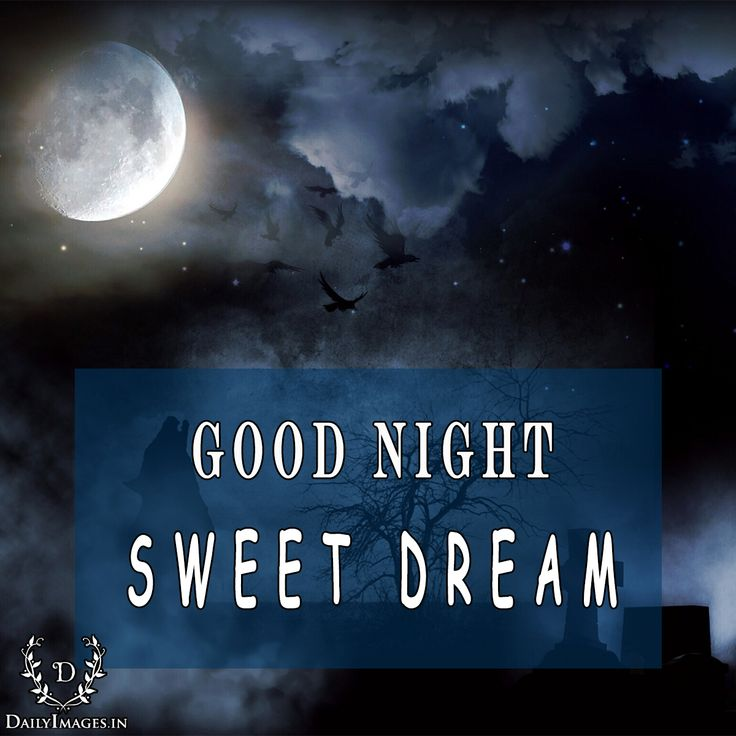GOOD NIGHT sweet dream. #goodnight #gn #quotes