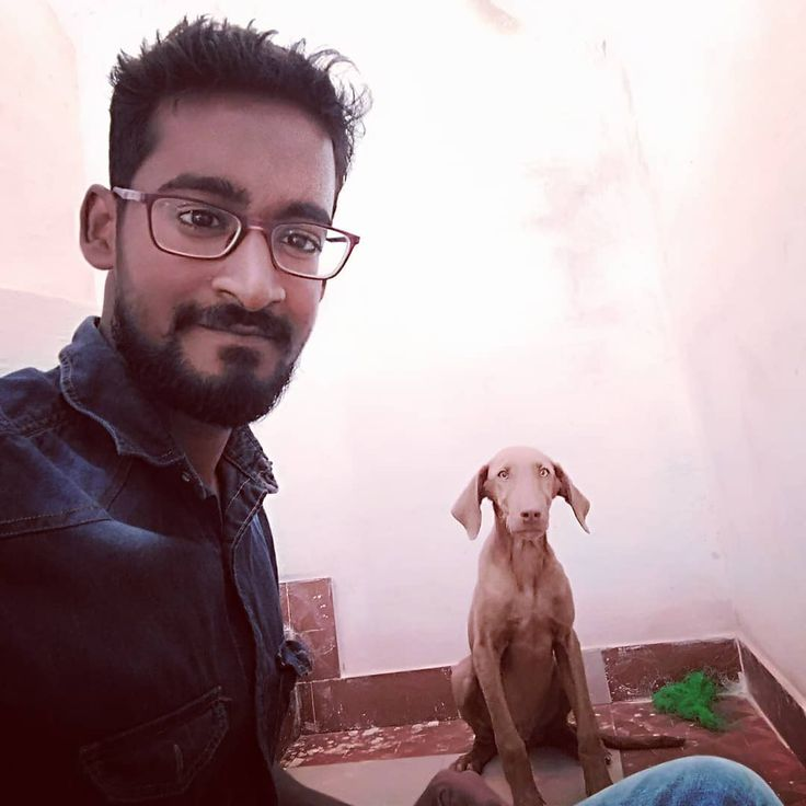 "#well ""Many things can be out of ur control but continuous effort is in ur hands."" #pet #dog #pup #mongrel #quote #vigedrquotes #veterinarianquotes #VigeDr #veterinarian #chocolatebrownhandsome #mustache #mustachelove #beard #beardlove"
