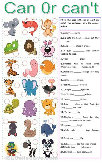 big_islcollective_worksheets_beginner_prea1_high_school_reading_modals_ability_activity_t__ability_194524ec2fe9ff405f8_23934615.jpg.png (343×566)