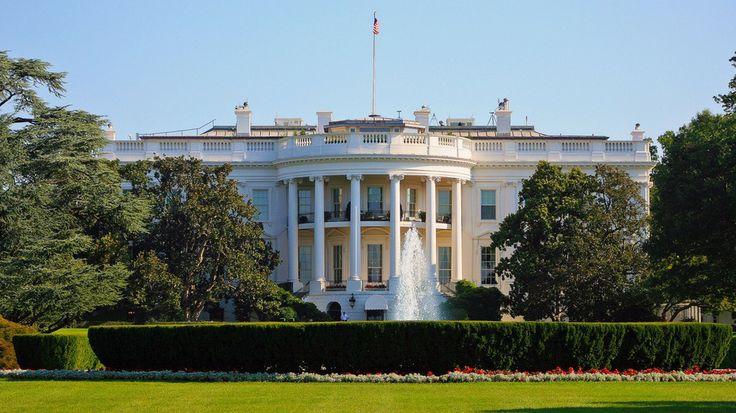 The Underdog Internet Providers Head to Washington