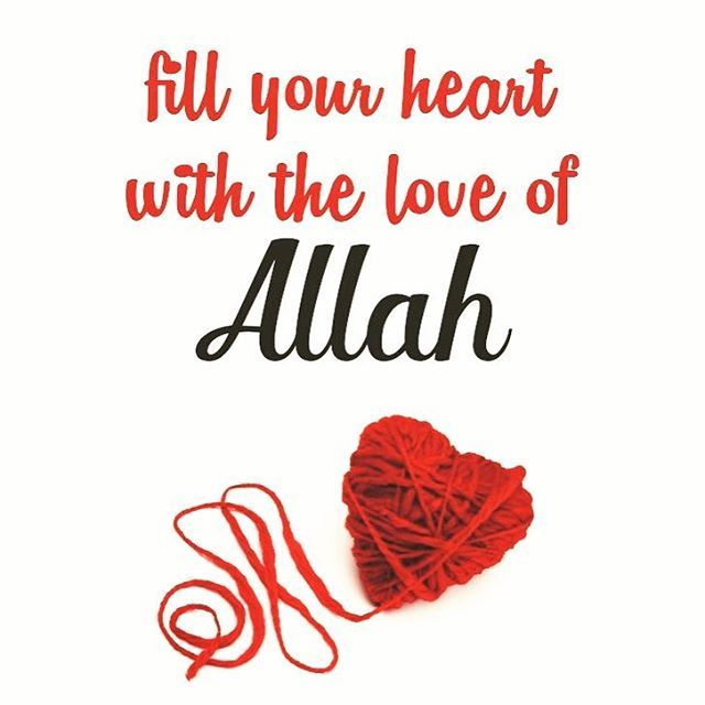 Seven Qualities that Allah Loves 1. Tawbah (Repentance) : (Truly Allah loves those who turn to Him in repentance (Al-Baqarah 2:222) 2. Taharah (Purification)   (...Allah loves those who purify themselves) (Al-Baqarah 2: 222) 3. Taqwa (Piety) (Surely, Allah loves Al-Muttaqun (the pious) ) (At-Tawbah 9: 4) 4. Ihsan (Goodness & Perfection) (Verily Allah loves Al-Muhsinun (the good doers)) (Aal `Imran 3: 34 5. Tawakkul (Trust in Allah) (Allah loves those who put their trust in Him) (Aal `Imran…