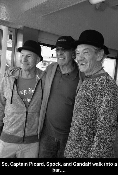 Patrick Stewart, Leonard Nimoy & Ian McKellen....  And it set on fire because it was too much awesome under one roof