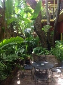 The French Quarter, actually Spanish colonial architecture, tucks away green spaces in interior courtyards. Olivier House Hotel on Toulouse Street
