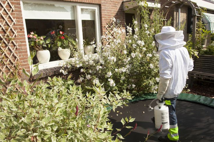 How to hire a pest control company that will take care of your needs without struggling with having a home infested by pests pest control going on in garden in the Netherlands    http://www.pasadenabestpestcontrol.com  Would it be alright with you to stop struggling with having a home infested by pests?  If you want to know how to hire a pest control company that will take care of your needs without the struggle lets do it  Below you will uncover  Here are 3 Tips to help you be able to find…