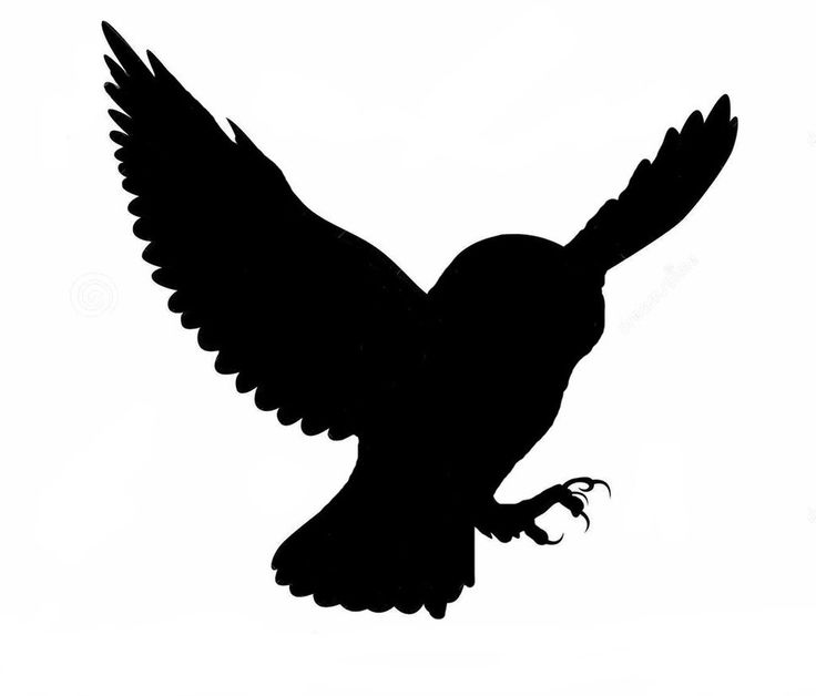 Owl Silhouette by ThatDarnKitty                                                                                                                                                                                 More