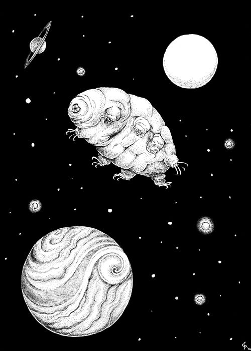 gillianposs:    Personal. Spacefaring Tardigrade. Pen and India ink.