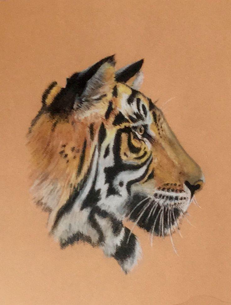 Tiger - Pastel pencil