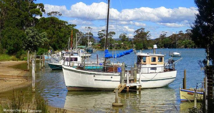 Murrays Day Out Tasmania   Pantana Rivulet near Port Sorell.
