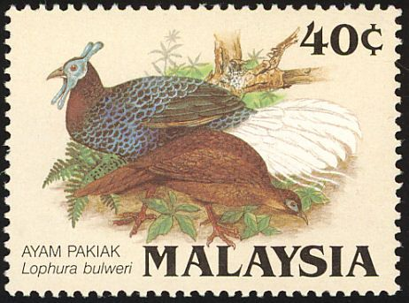 stamps showing bulwers pheasant lophura bulweri with distribution map showing range