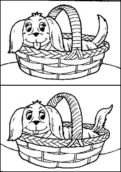 KleuterDigitaal - wb verschillen hond 02, etsi erot