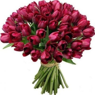 życzenia urodzinowe bukiety | Ekartka Bukiet tulipanów na Twoje urodziny - wyślij darmową e ...