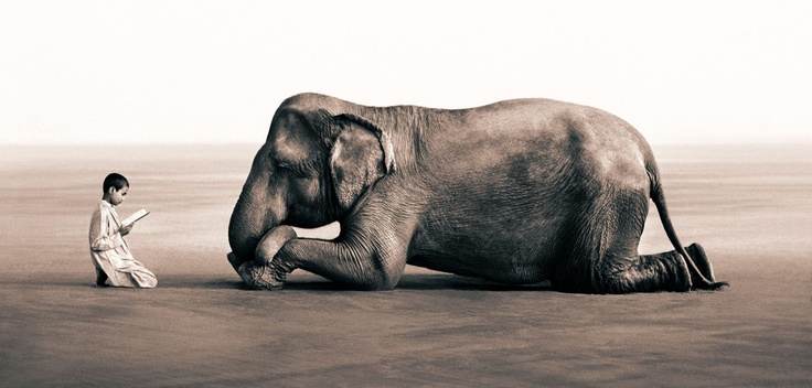 "from ""ashes and snow"" by gregory colbert"