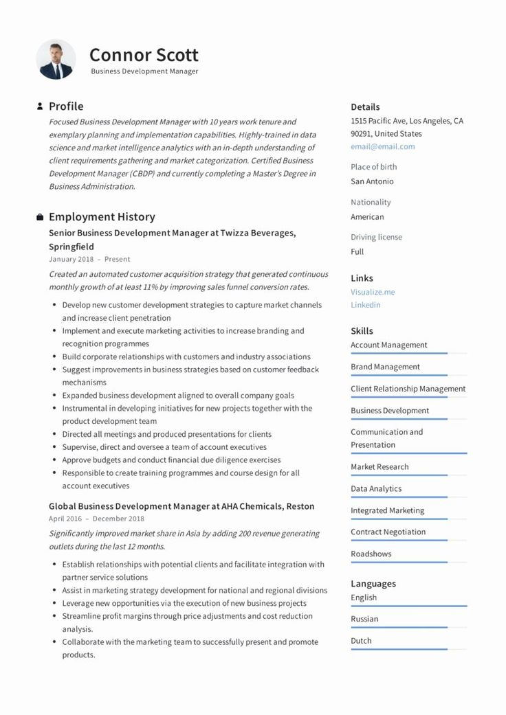 Business Development Executive Resume Best Of Business