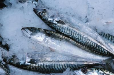 How to Cook Trout on the Grill