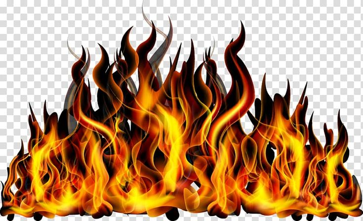 Red And Black Flames Flame Fire Combustion Fire Transparent Background Png Clipart Blue Background Images Lightning Photography Fire Tattoo