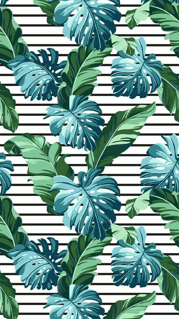 Pin by Abigail Cristina on Wallpapers | Iphone wallpaper tropical, Plant  wallpaper, Iphone wallpaper