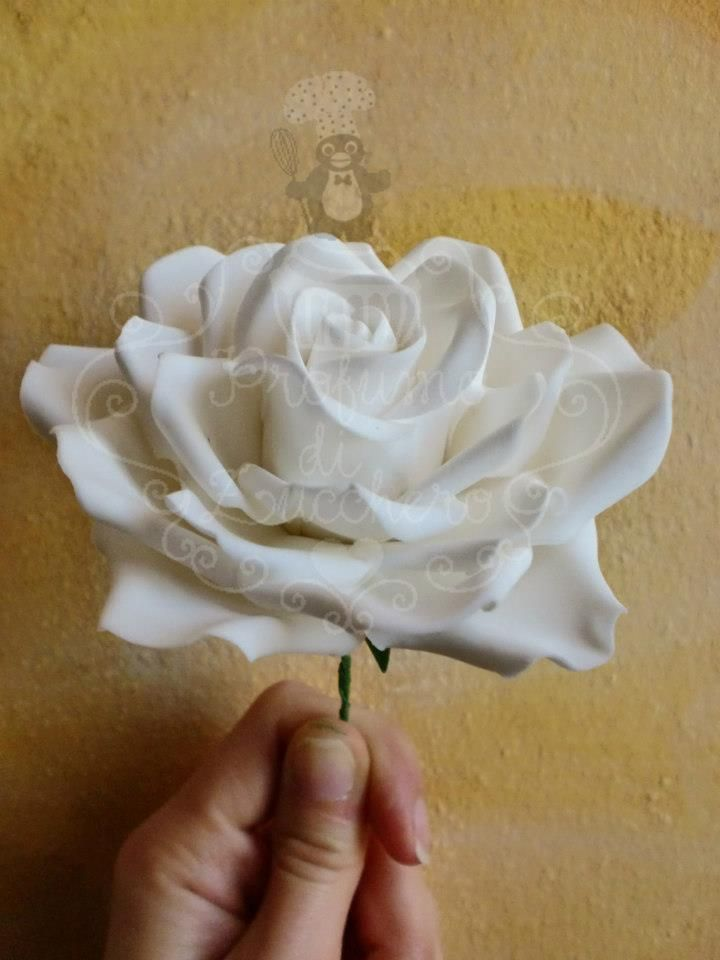 Rose fondant tutorial  https://www.facebook.com/media/set/?set=a.347939195327484.1073741828.273208226133915=1