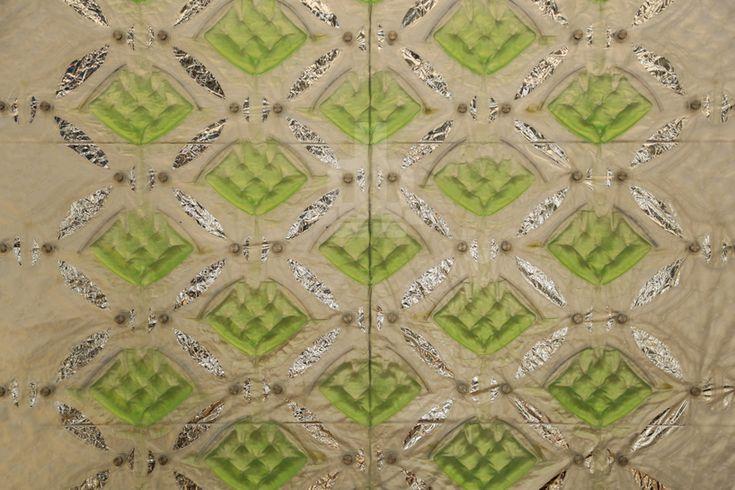 CRA_FFD_algaetecture_designboom05