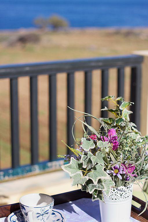 Panormos apartment rental - Balcony details!