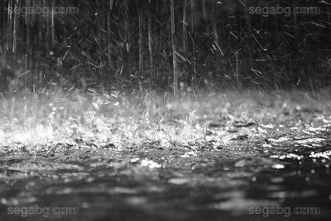 Жълт код за гръмотевична активност е в сила за 24 области на страната, сочи справка на интернет страницата на Националния институт по метеорология и хидрология към БАН, ...