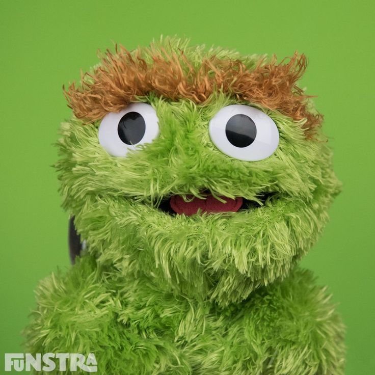Oscar the Grouch and more Sesame Street toys at Funstra