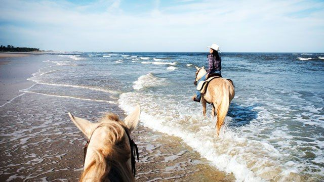 Amelia Island, Florida Travel Guide: Hotels, Restaurants, and Beaches : Condé Nast Traveler