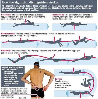 25 Best Ideas About Different Swimming Strokes On Pinterest Swimming Strokes Swimming