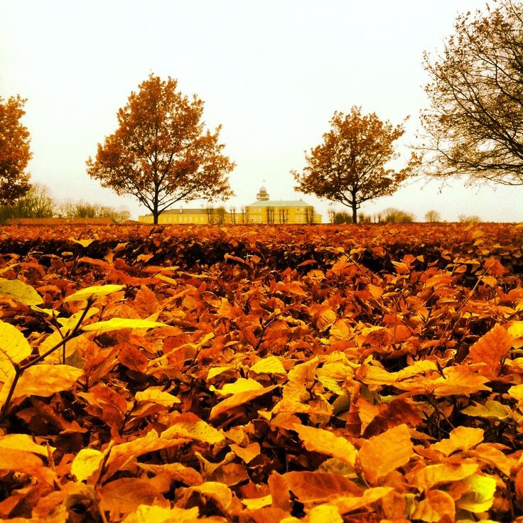 #Fall #Autumn #Copenhagen #Frederiksberg