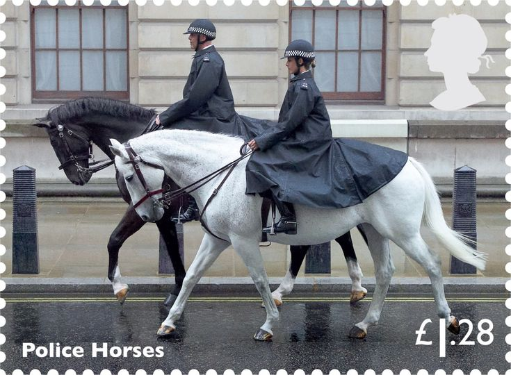 Police Horses, £1.28.