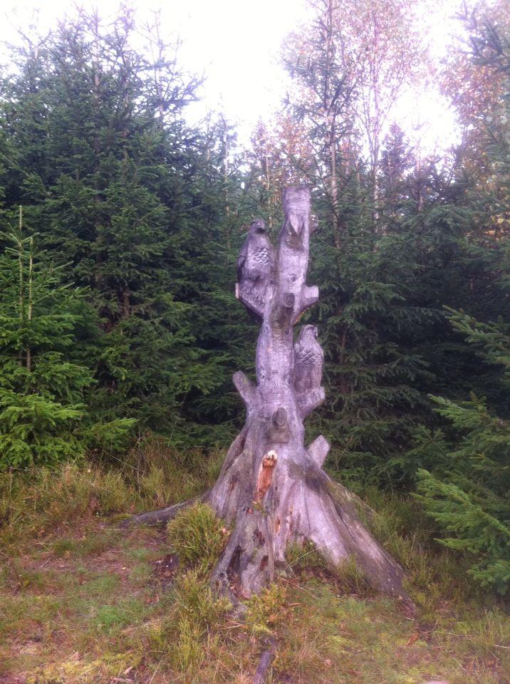 Wooden art at the Uplandsteig at Willingen (Upland)